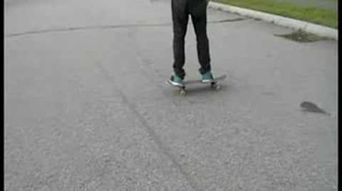Haslam Flip