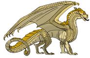 Piaskoskrzydły (2)