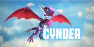 Cyndersky