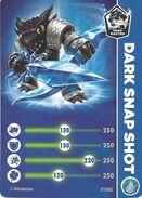 DSS Card