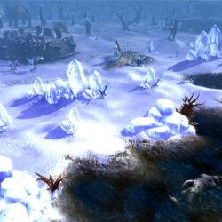 Frost Landscape.jpg
