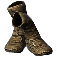 Boots ShockResistance male.png