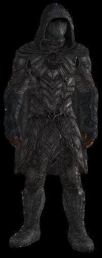 Sentinel in full Nightingale armor