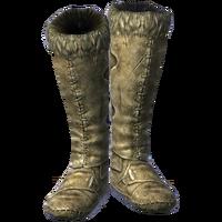 Boots ShockResistance female.png