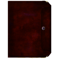 Book Dossier3.png