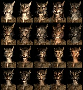 Khajiit tiger-men race face compilation.