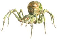 PoisonousSpider.png