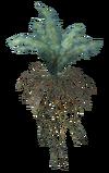 Nirnroot plant