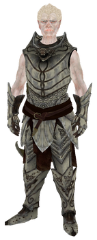 Knight-Paladin Gelebor.png