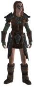 Aela die Jägerin