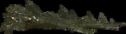 Mora Tapinella auf einem gefällten Baum