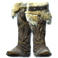 HideBootsofResistFrost.png