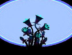 Gleamblossom plant