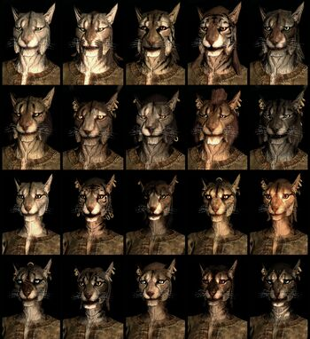 Khajiit tiger-men race face compilation.