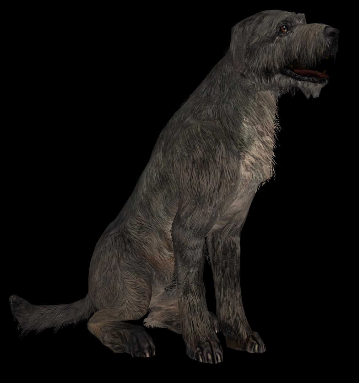 Dog Skyrim Wiki