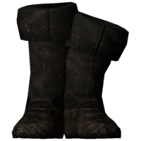 FineBoots.png
