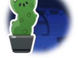 Potted Tactus