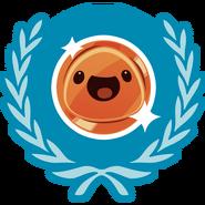 Bronze Achievement