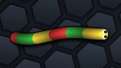 SnakeSkin 29.png