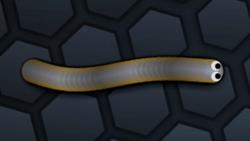SnakeSkin 27.png
