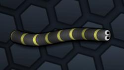 SnakeSkin 30.png