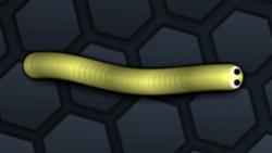 SnakeSkin 5.png