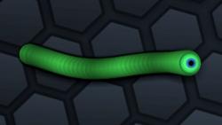 SnakeSkin 28.png