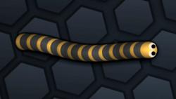 SnakeSkin 34.png