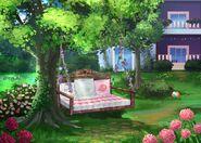 33Dom Iris - Ogród