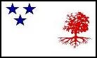 MS-Zastava10.png