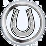 One Silver Horseshoe