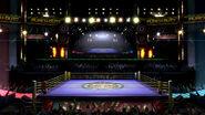 Ring de boxe Ultimate blog 2