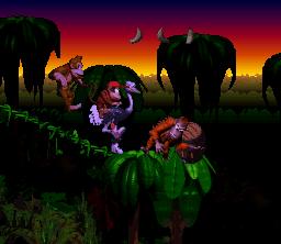 Jungle Kongo