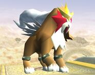 Entei Brawl 1