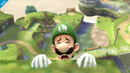 Luigi SSB4 Profil 6