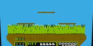 Duck Hunt CB Ultimate