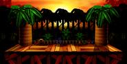 Jungle Kongo DF Ultimate