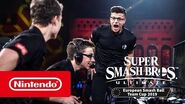 Meilleurs moments de la Super Smash Bros