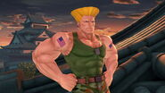 Profil Guile Ultimate 1