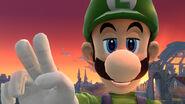 Image du jour Luigi 07 08 13