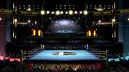 Ring de boxe Ultimate blog 1