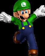 Art Luigi SM64DS