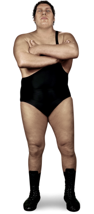 Andre The Giant.png