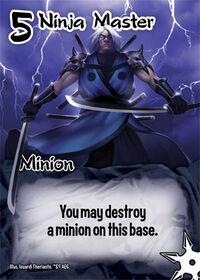 Ninja master.jpg