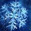Winter Holiday Bundle
