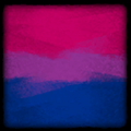 Icon Player Flag Bisexual.png