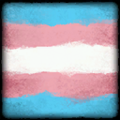 Icon Player Flag Transgender.png