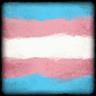 Transgender Flag Avatar