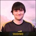 Shadowq.jpg