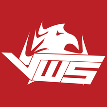 VwS Gaminglogo square.png